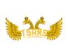 tsars logo concept.png