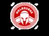 titans logo 3.png