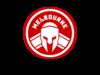 titans logo 4.png