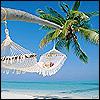 Lifes a Beach1