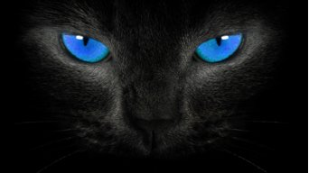 Black2Blue