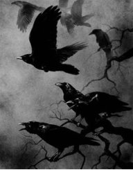 Swooping Crow