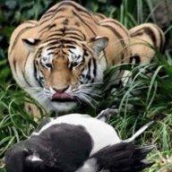 Tiger Soze