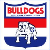 Bulldog Brent