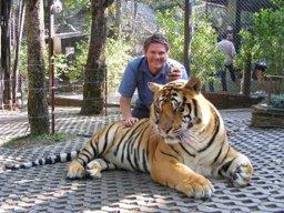 Dr Tigris