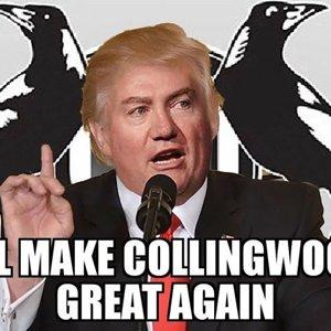 Make Collingwood Great Again