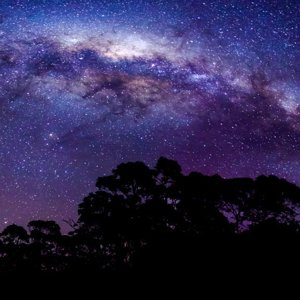 Milky Way skyline