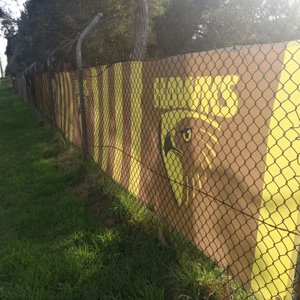 dingley fence