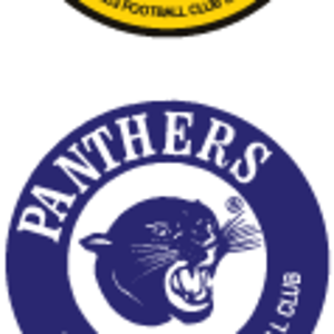Retro_SANFL_clubs.png